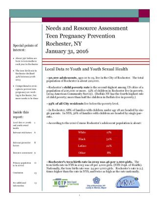 THRIVE Needs Resource Assement Report Jan 2016 1